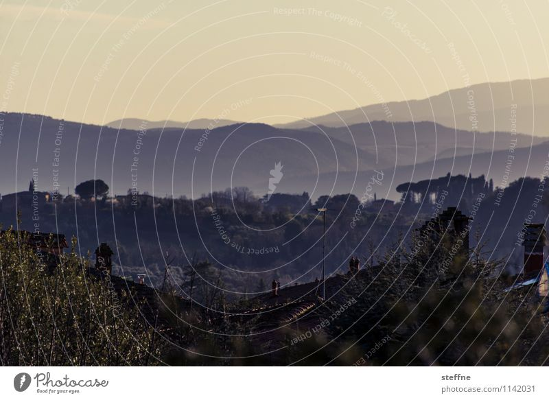 Toscana Ferien & Urlaub & Reisen ästhetisch Italien Romantik Hügel Toskana Abendsonne Siena