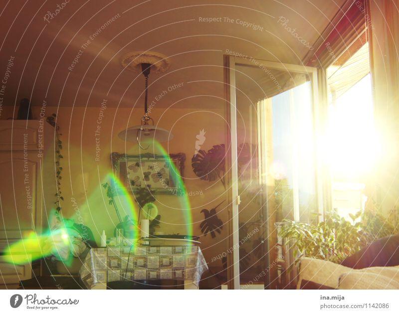 Raumerlebnis Haus Fenster Innenarchitektur Stimmung Wohnung Raum Häusliches Leben Dekoration & Verzierung fantastisch Möbel Wohnzimmer gemütlich Lichtspiel Lichtpunkt Einfamilienhaus Lichteinfall