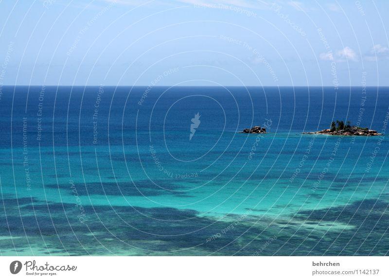 große erwartungen Ferien & Urlaub & Reisen Tourismus Ausflug Abenteuer Ferne Freiheit Landschaft Himmel Wolken Horizont Sommer Schönes Wetter Palme Felsen Küste