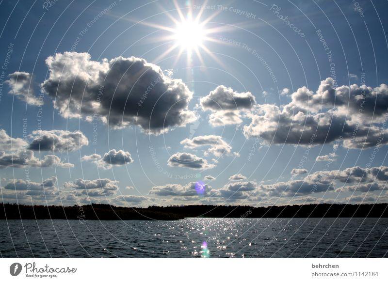*200* sonnenstrahlen... Himmel Ferien & Urlaub & Reisen blau schön Sommer Wasser Sonne Landschaft ruhig Wolken Ferne Wald Frühling Glück Freiheit See