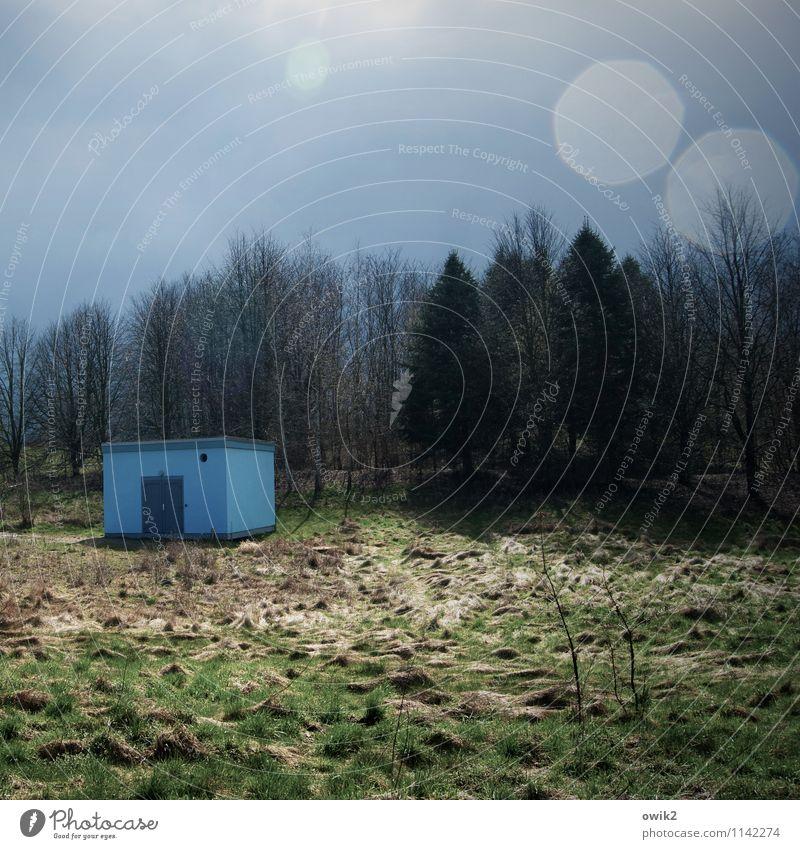 Blauer Fleck Energiewirtschaft Umwelt Natur Landschaft Pflanze Himmel Wolken Klima Wetter Schönes Wetter Baum Gras Sträucher Hütte Industrieanlage Mauer Wand