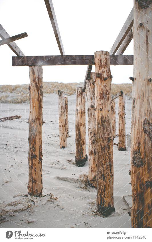 Brett vorm Kopf Sommer Erholung Strand Umwelt Traurigkeit Frühling Herbst Holz außergewöhnlich Linie braun Sand träumen ästhetisch Kultur Trauer