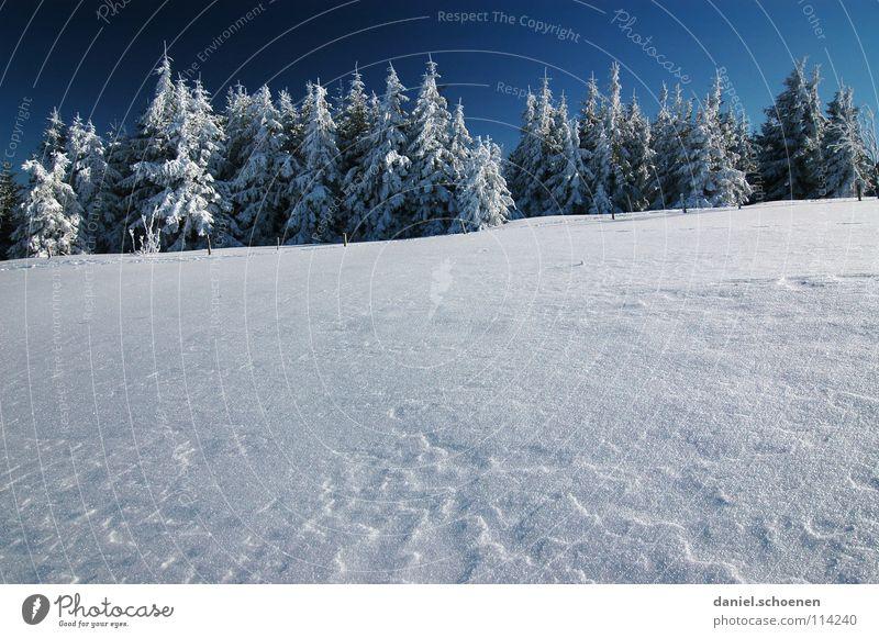 Weihnachtskarte 20 Himmel Natur blau weiß Ferien & Urlaub & Reisen Winter Einsamkeit Wald kalt Schnee grau Wetter Hintergrundbild Freizeit & Hobby wandern Schönes Wetter