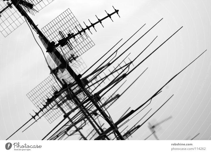 Empfangsberechtigt schwarz Metall Technik & Technologie Kommunizieren Fernseher Dach Fernsehen Telekommunikation Strahlung Radio Antenne Begrüßung Überwachung