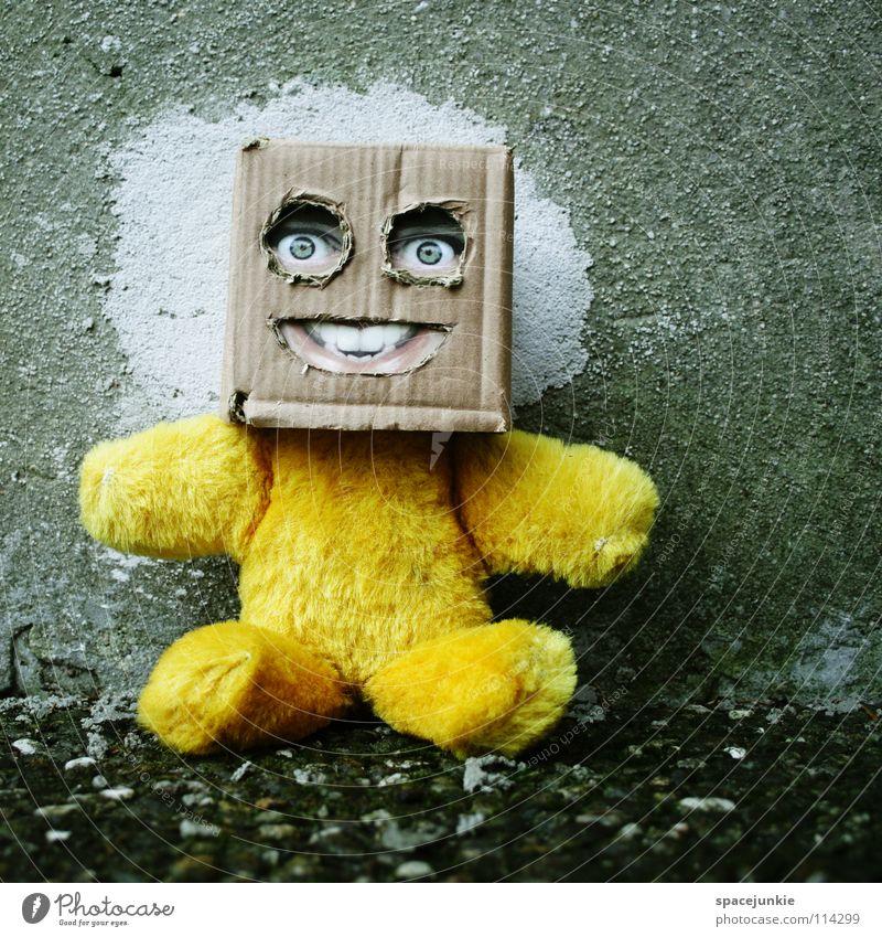 Zurück zum Beton Karton skurril Humor Freak Quadrat Handpuppe Spielzeug Teddybär Wand Freude Gesicht Maske Versteck verstecken Quadratschädel Puppe
