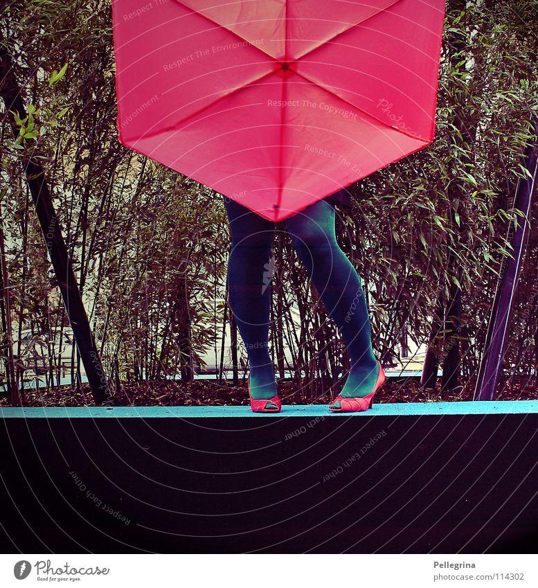 Lady mit Schirm und Charme Schuhe rot rosa grün Strümpfe Madame Frau Dame verweht Leidenschaft Sockel schrim Pflanze Treppenabsatz Beine Regen Wind Wetter Fuß