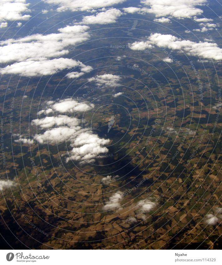 Über den Wolken Baum Luft Himmel Luftverkehr Freiheit Erde Landschaft