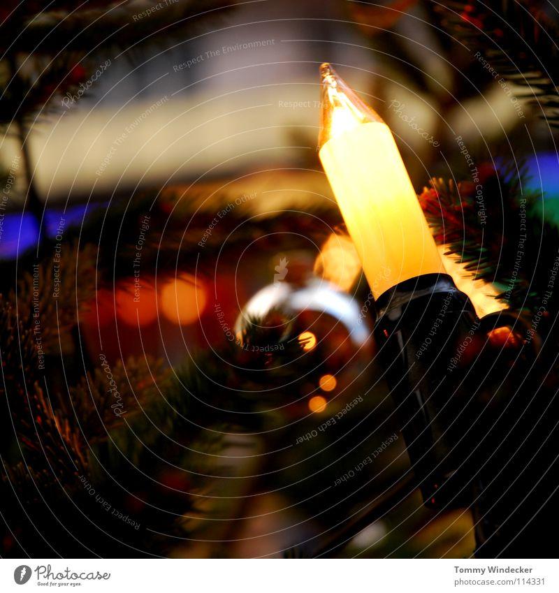 Oh Tannenbaum Weihnachtsbaum Kerze Christbaumkugel Baumschmuck Weihnachtsdekoration geschmückt Licht Weihnachten & Advent Schmuck Lichterkette Feste & Feiern