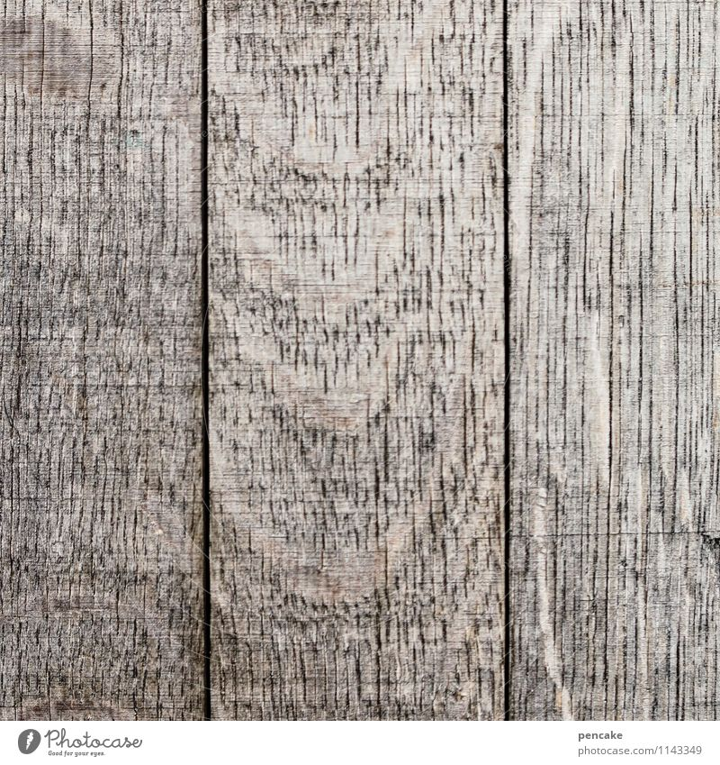 blank Natur authentisch einfach Sauberkeit grau Holzbrett alt verwaschen nackt leer blanko Schiffsplanken Maserung Farbfoto Gedeckte Farben Außenaufnahme