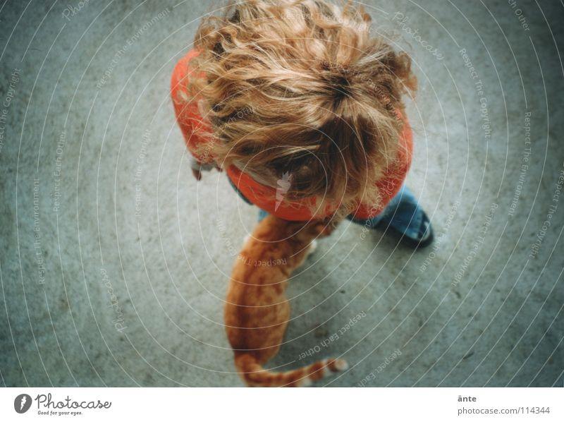 rotblond Katze Vogelperspektive Beton Spielen Haare & Frisuren Hauskatze diffus unklar Kind Mädchen lockig Fell oben hair cat child play