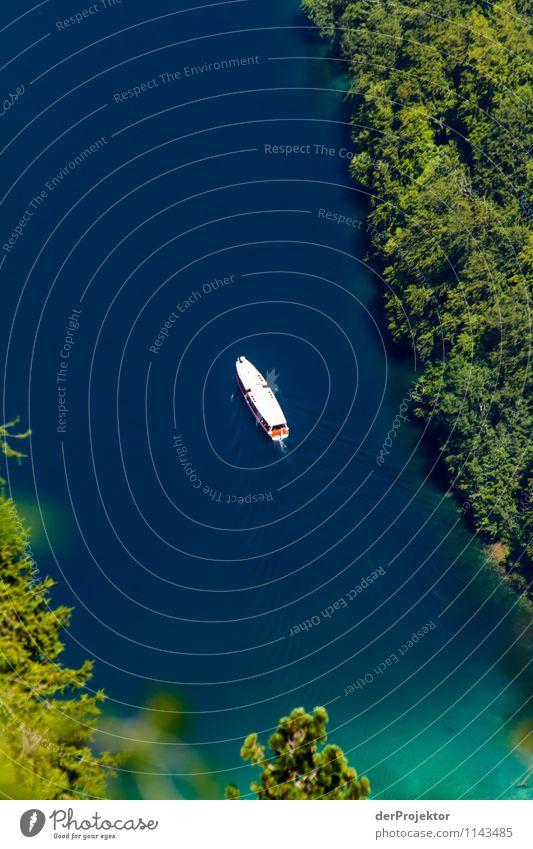 Amazonas von oben Natur Ferien & Urlaub & Reisen blau Pflanze Sommer Wasser Landschaft Freude Tier Umwelt Berge u. Gebirge Gefühle See Zufriedenheit Tourismus wandern