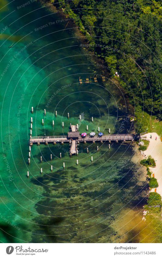 Anlegestelle Salet am Königssee II Natur Ferien & Urlaub & Reisen Pflanze Sommer Landschaft Freude Tier Ferne Strand Berge u. Gebirge Umwelt Gefühle Tourismus