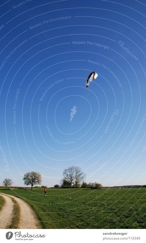 Kiteflight Himmel blau grün Sommer Spielen Wind fliegen Drache Kiting
