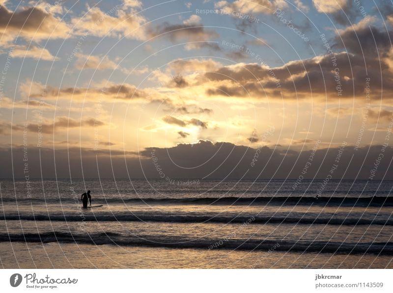 Surfer im Sonnenuntergang in Mauritius surfen meer strand urlaub sommer silhouette mann sport freizeit mauritius surfer wassersport sonnenuntergang abend