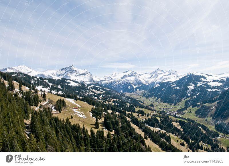 Gsteig b. Gstaad Himmel Erholung Landschaft ruhig Wald Berge u. Gebirge Leben Frühling Schnee Sport fliegen Freizeit & Hobby Luft Feld Wind Ausflug