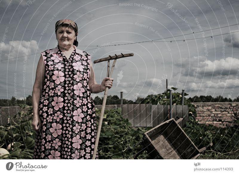 wo die zeit still steht.. Frau Großmutter alt Wachstum Ruhestand Landwirt Bauernhof Tier Landwirtschaft Ernährung Zerealien Vitamin Gras Stroh trocken trocknen
