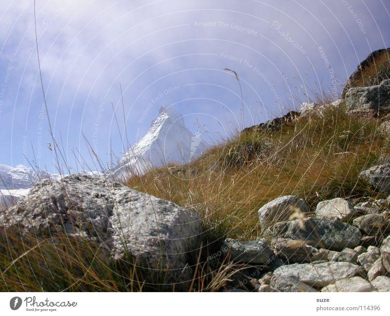 Matterhorn Himmel Natur Ferien & Urlaub & Reisen Sommer Einsamkeit Wolken Landschaft Umwelt Berge u. Gebirge Gras Stein Luft Felsen natürlich Erde Freizeit & Hobby
