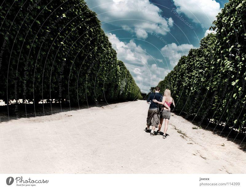 Gleichschritt ins Glück II Frau Mann Hand Jugendliche Himmel weiß blau Sommer Freude Liebe Wolken Frühling Paar Wege & Pfade Wärme