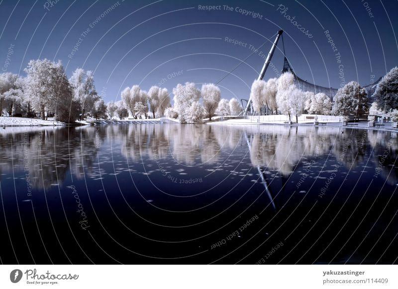 durch die späte dunkelheit 2 grau weiß beige Horizont Baum Sträucher Wiese Park Infrarotaufnahme Farbinfrarot Langzeitbelichtung Farbe blau Wasser Himmel Rasen