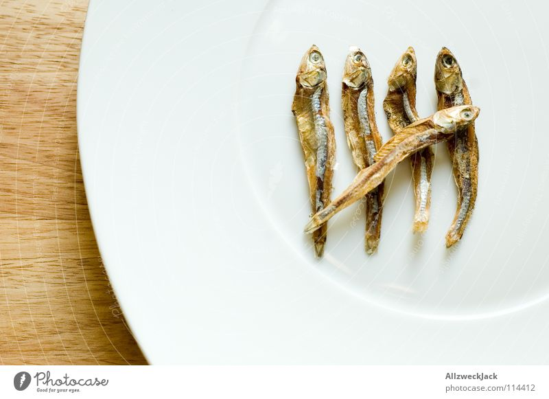 Hommage an den Zählfred 5 Trockenfisch Katzenfutter Diät zählen trocknen Delikatesse Feinschmecker Meeresfrüchte Teller Holz Schneidebrett Gastronomie