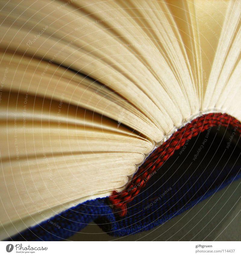 seitenweise Buch lesen Literatur Bildung Fächer binden gebunden weiß rot Makroaufnahme Nahaufnahme Studium Seite blättern Rücken blau