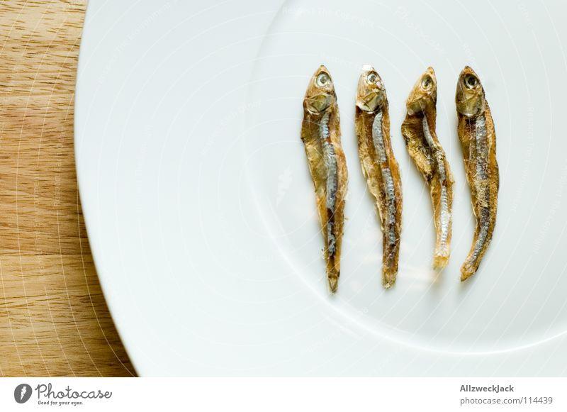 Findet Nemo Holz Fisch 4 Gastronomie Appetit & Hunger Geschirr Teller abwärts Diät trocknen Schneidebrett getrocknet zählen Delikatesse minimalistisch Meeresfrüchte