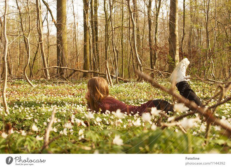 Frühlingsfeeling Mensch Natur Jugendliche Pflanze grün weiß Junge Frau Baum Blume Landschaft Mädchen Wald Umwelt Blüte feminin