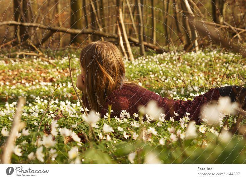 Märchenwald Mensch Kind Natur Jugendliche Pflanze grün weiß Junge Frau Blume Landschaft Mädchen Wald Umwelt Blüte Frühling natürlich