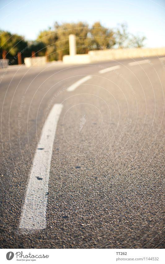 Gestrichelt I Landschaft Verkehr Autofahren Straße Freundlichkeit Asphalt Schilder & Markierungen Farbfoto Außenaufnahme Menschenleer Morgen Tag Licht