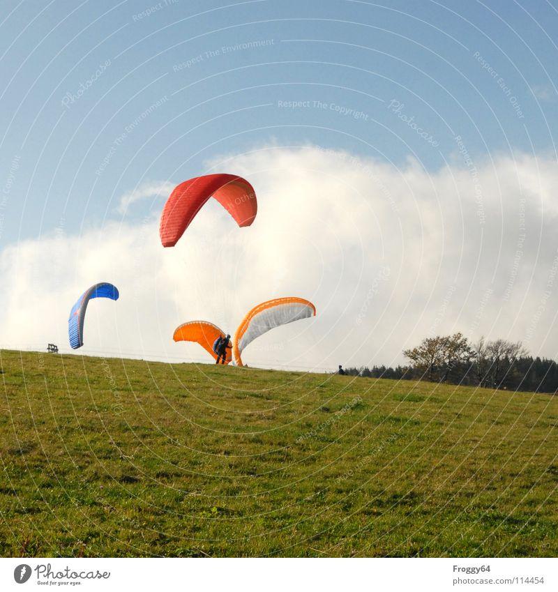 Alle Vögel sind schon da Gleitschirmfliegen Farbenspiel himmelblau Romantik Sonnenlicht Starterlaubnis Kontrast Südbaden Schauinsland Kontrollblick Freude Sport