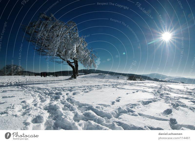 Weihnachtskarte 22 Himmel Natur Ferien & Urlaub & Reisen blau weiß Baum Sonne Einsamkeit Winter Berge u. Gebirge kalt Schnee Hintergrundbild Deutschland Horizont Wetter