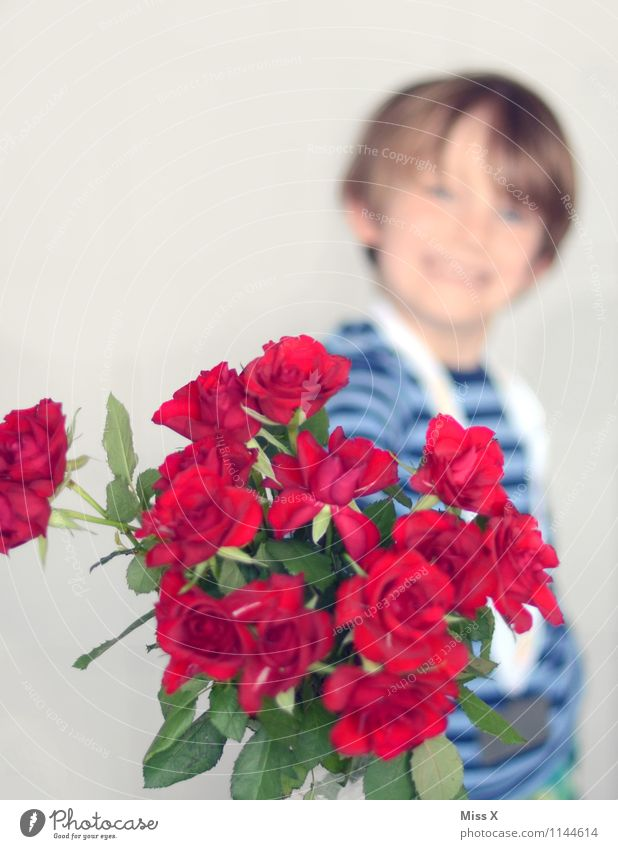 Nur das Beste Mensch Kind Blume Gefühle Liebe Junge lachen Feste & Feiern Stimmung maskulin Kindheit Geburtstag Lächeln Romantik Rose Blumenstrauß