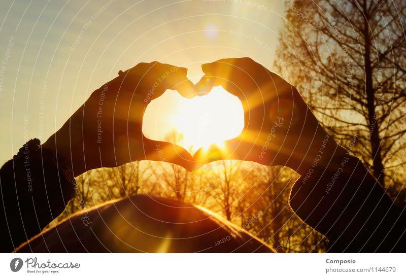 Herz / Sonne Lifestyle harmonisch Freizeit & Hobby Natur Sonnenaufgang Sonnenuntergang Sonnenlicht Schönes Wetter Liebe Blick ästhetisch elegant Unendlichkeit