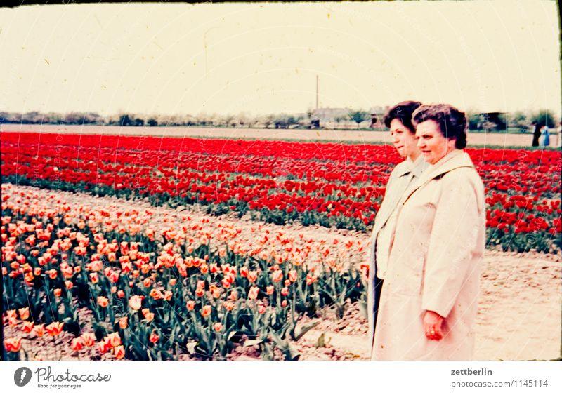 Ursel und Hedwig Mensch Frau Kind Blume Landschaft Ferne Blüte Mode Familie & Verwandtschaft Horizont Feld Kindheit Fotografie Kindheitserinnerung Körperhaltung