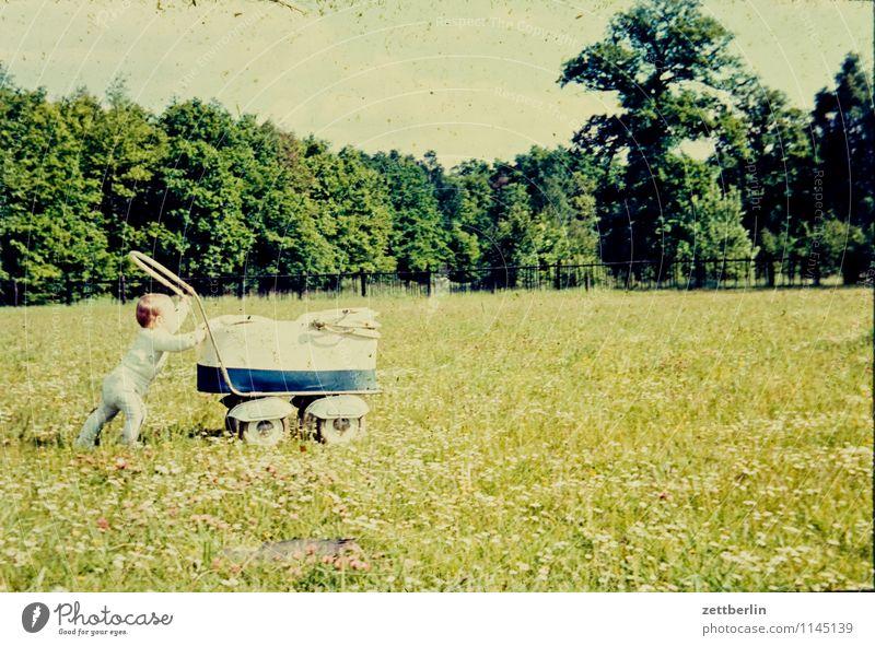 Kinderwagen, 1961 Landschaft Wiese Mode Familie & Verwandtschaft Horizont Park Kindheit Fotografie Kindheitserinnerung fahren Vergangenheit Kleinkind Erinnerung