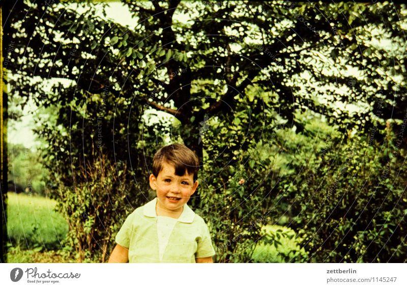 Kind, frisch geweint Mensch Natur Landschaft Gesicht lachen Familie & Verwandtschaft Mode Park Textfreiraum Lächeln Baby Vergangenheit Kleinkind direkt