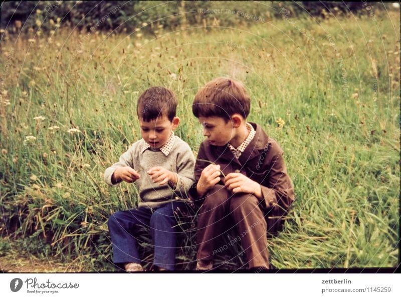 Brüder, 1968 Mensch Kind Natur Landschaft Gesicht Junge Wege & Pfade Familie & Verwandtschaft Mode Paar Park paarweise Textfreiraum Vergangenheit Ziel Kleinkind