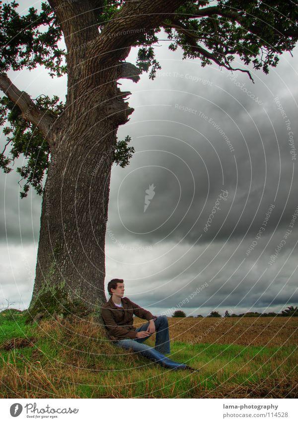 Zeit zum Nachdenken Mann Natur Himmel Baum Wolken Einsamkeit Ferne dunkel kalt Erholung Herbst Wiese Freiheit grau Traurigkeit Denken
