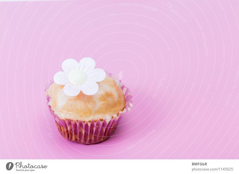 Süßes fürs Auge und den Gaumen Lebensmittel Teigwaren Backwaren Kuchen Süßwaren Muffin Ernährung Frühstück Kaffeetrinken Büffet Brunch Fingerfood