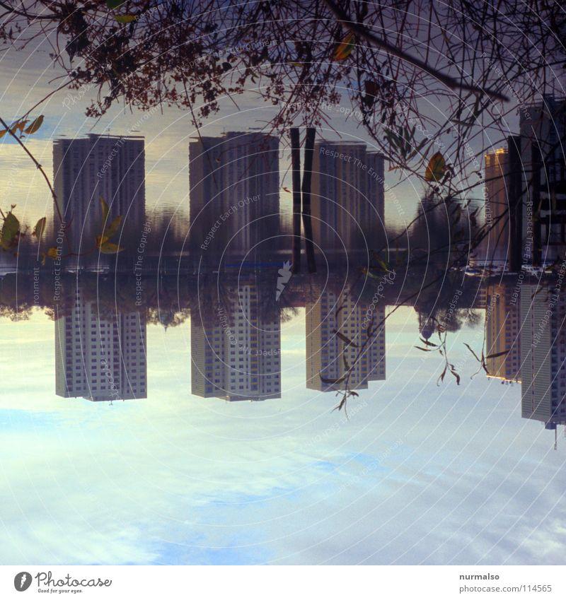Doppeltes Lottchen Wasser schön Haus ruhig Herbst Berlin See Wasserfahrzeug Arbeit & Erwerbstätigkeit Wellen Beton modern Hochhaus Sträucher Bad Fluss