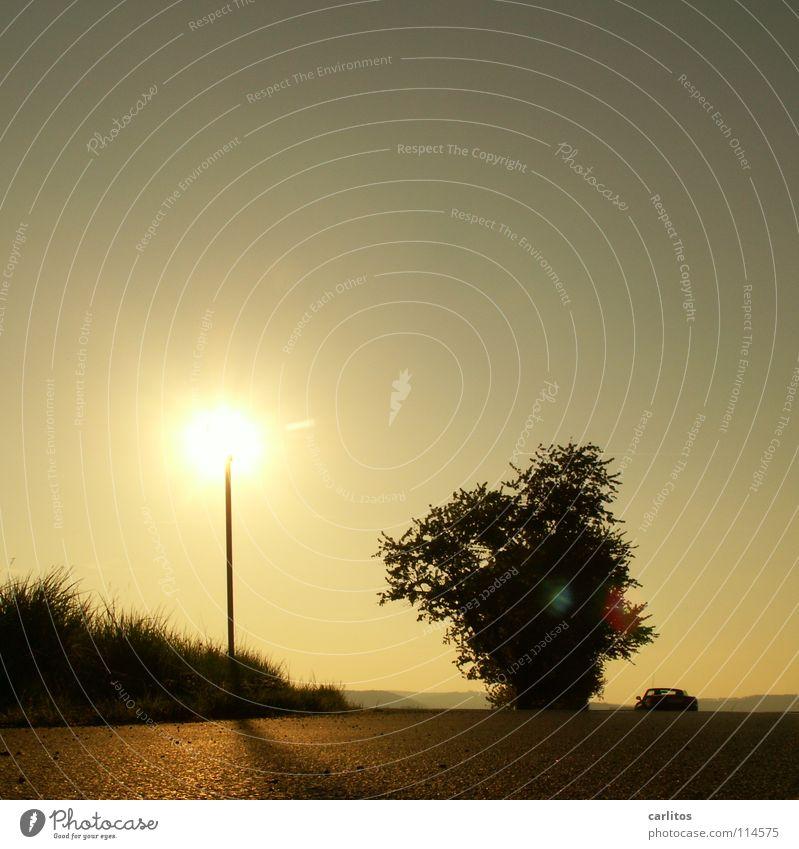 Heiss am Stiel Baum Herbst Berge u. Gebirge Nebel Wetter Energiewirtschaft Hügel Sonnenenergie Allee blenden Landstraße Morgennebel Abstufung Arbeitsweg