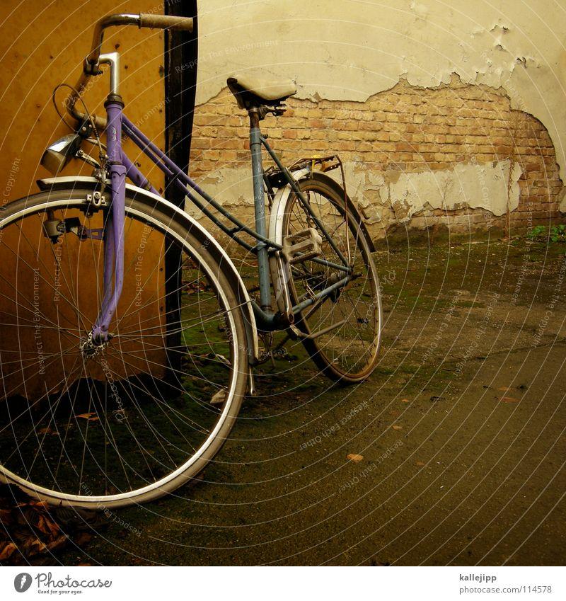 99.941 Fahrrad Oldtimer Rad Hinterhof Gitter Einfahrt Abstellplatz Billig ökologisch Klimaschutz Gummi Silhouette Ständer Mauer Rücklicht Kotflügel Felge