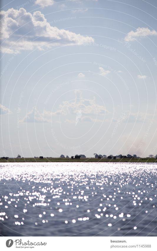 _. Himmel Natur Ferien & Urlaub & Reisen Sommer Wasser Sonne Baum Landschaft Wolken Ferne Umwelt Wärme Freiheit Wetter Erde Tourismus