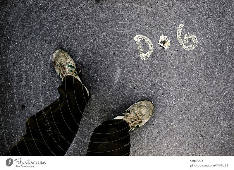Dog Hund Verkehrswege Graffiti Wandmalereien dog tenis shoes Detailaufnahme feet pants pavement writing paint boardwalh Turnschuh casual corduroy man two