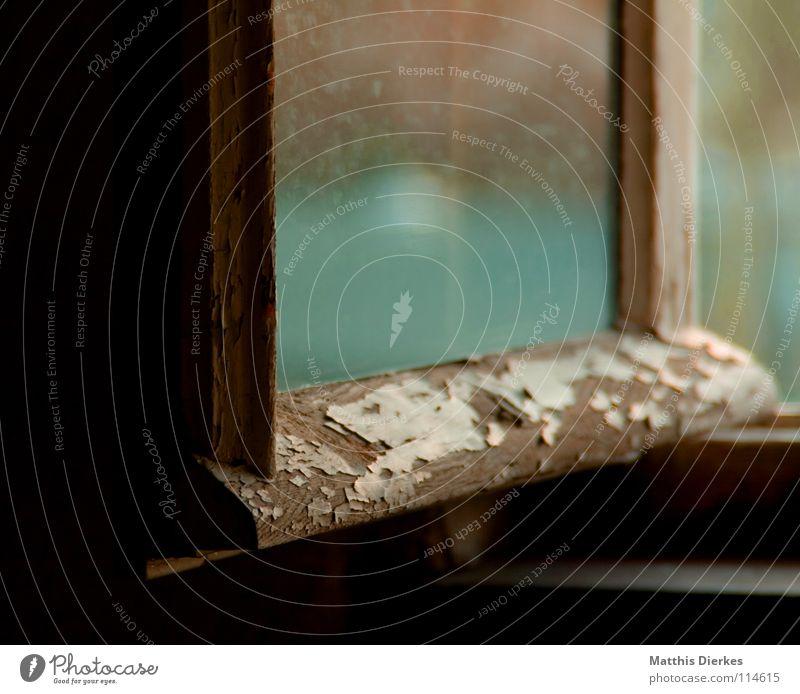 Fenster Ausblick alt grün schön Farbe Fenster Wand Wärme Holz fliegen Wohnung Häusliches Leben dreckig Glas groß retro Flugzeug