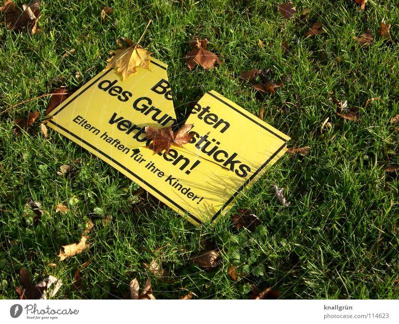 Gilt nicht! Verbote kaputt Wiese Herbst Blatt Vandalismus grün gelb braun gefährlich Warnhinweis Warnschild Schilder & Markierungen Rasen
