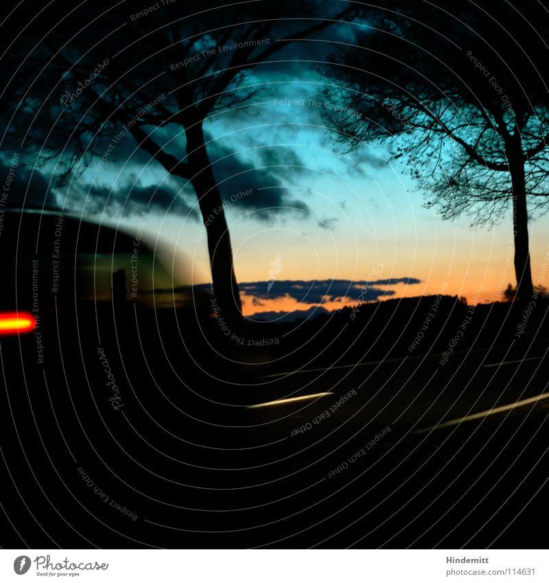 Twilight near OBD Abend Dämmerung Wolken dunkel Baum laublos Regen nass Reflexion & Spiegelung Lampe Herbst Winter Fahrzeug Rücklicht Bremslicht rot grün Licht