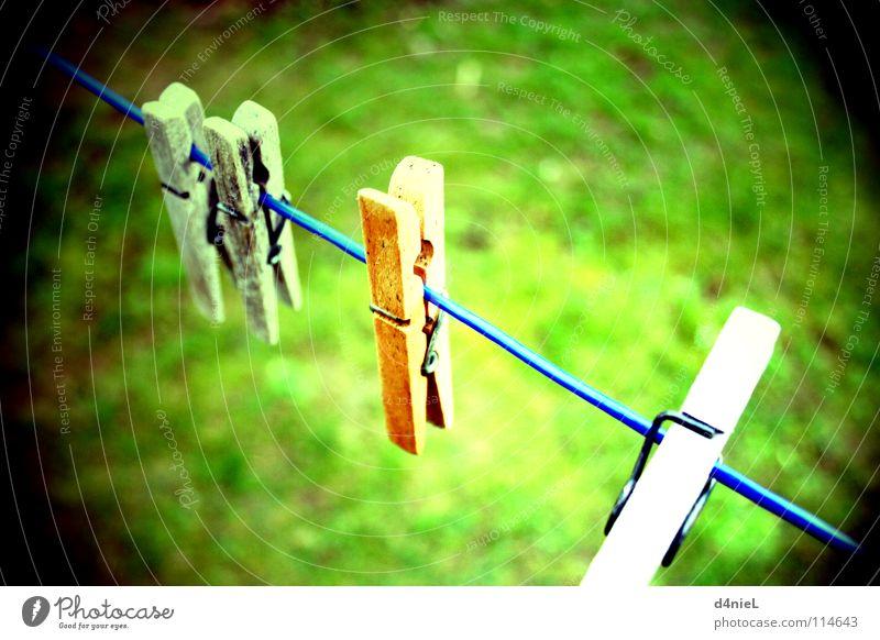 In der Klemme grün blau Sommer Einsamkeit Herbst Wiese Gras Holz hell braun Erfolg Seil Perspektive Aussicht Bodenbelag 4