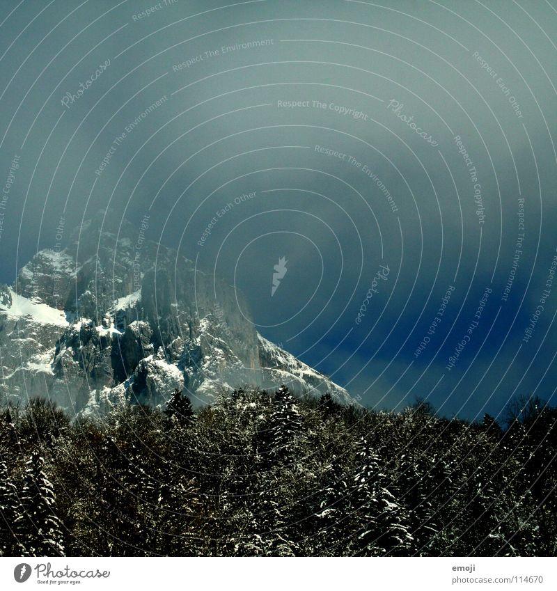 Berge, die es auch probieren Nebel Hochnebel Wolken Baum Wald Holzmehl Himmel weiß Winter Berge u. Gebirge mountains Schnee schneeeinbruch wetterumsturz trees