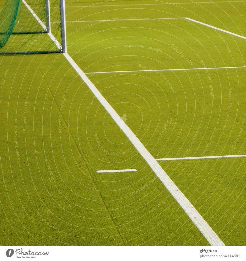nach dem spiel ist vor dem spiel grün Sport Spielen Linie Freizeit & Hobby Fußball Platz Erfolg Ball Rasen Netz Tor Spielfeld Fußballer Publikum Stadion